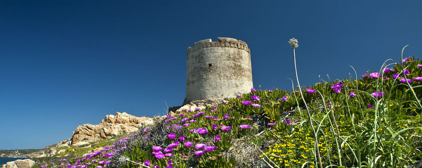 spanish tower Isola Rossa in spring